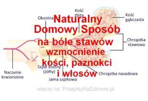 PrzepisyNaZdrowie.pl-domowy-sposob-na-bole-stawow-wzmocnienie-kosci-wlosow-paznokci