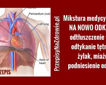 PRZEPISYNAZDROWIE.pl.stluszczenie-watroby-odetkanie-tetnic-zylaki-przepis-domowy