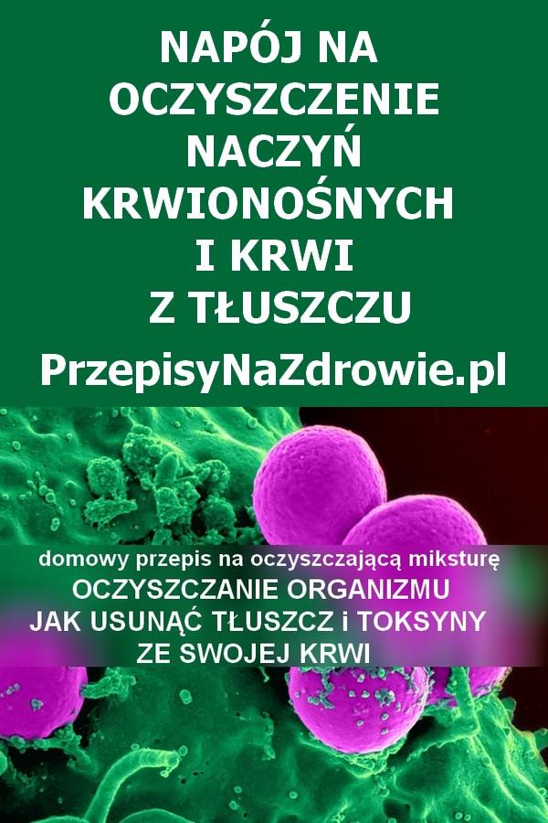 przepisynazdrowie-oczyszczanie-organizmu-oczyszczanie-krwi-z-toksyn-1